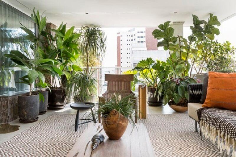 Como escolher plantas para varanda